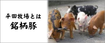 平  田牧場銘柄豚