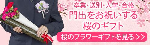桜のギフト